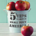 5 Tips to Grow in Small Town America